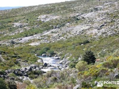 La Mira - Los Galayos (Gredos);excursiones con perros escapadas sierra de madrid
